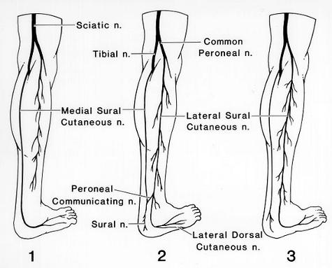 Leg Numbness During Meditation - Sage Meditation